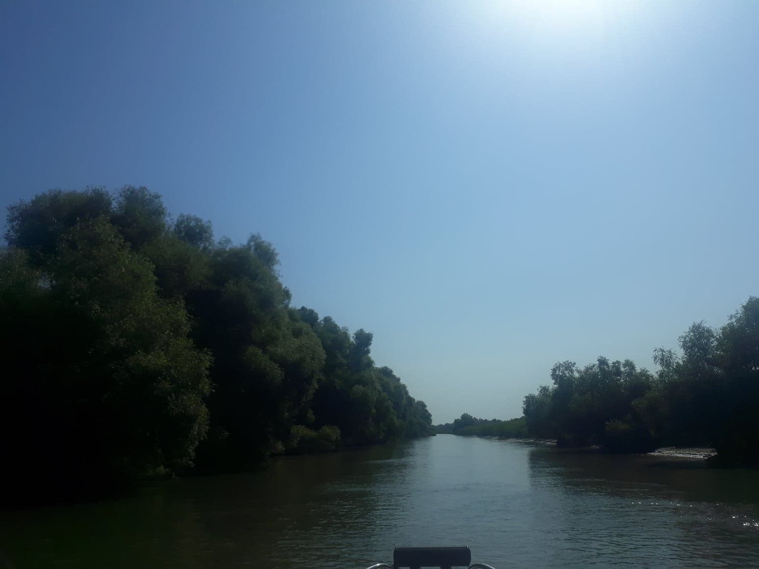 Persoană decedată gasită pe un canal din Deltă