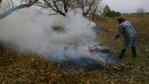 Amenzi de până la 20.000 de lei pentru arderea frunzelor