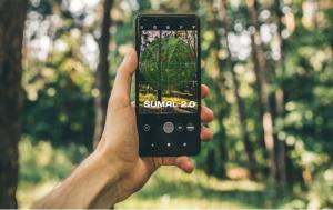 Noul sistem informatic de urmărire a materialului lemnos, SUMAL 2.0, este în funcţiune