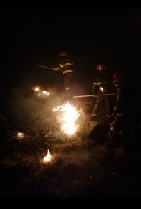 Primul incendiu de vegetație din acest an – au ars circa 5 ha