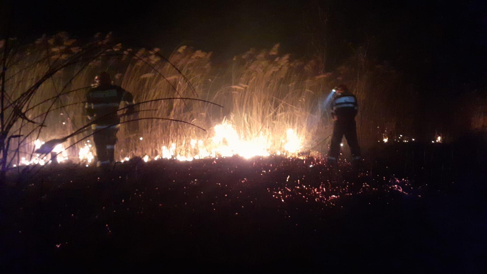 Pompierii încep lupta cu focul la miriște
