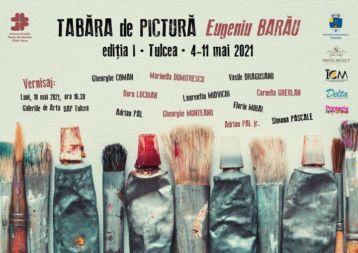 """Proiectul """"Tabăra de Pictură Eugeniu Barău"""" a primit undă verde"""