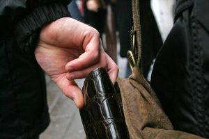 Patria hoților și…a nepăsării polițiștilor