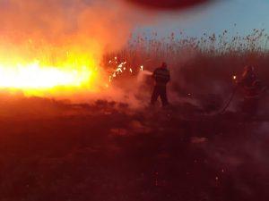 Un alt incendiu de stuf