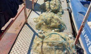 Scrumbia la mare căutare de 'pescari'
