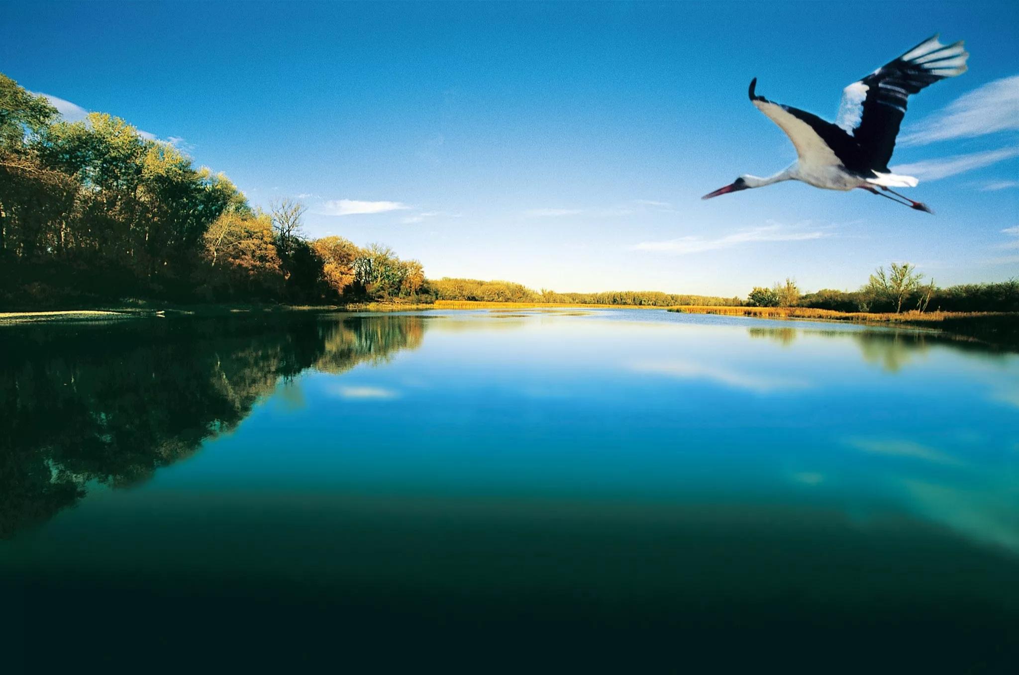 Azi este și Ziua Europeană Natura 2000