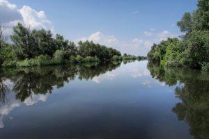 Zece infracțiuni flagrante descoperite pe linia braconajului piscicol