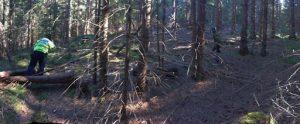 Familie rătacită în pădure salvată de polițiști