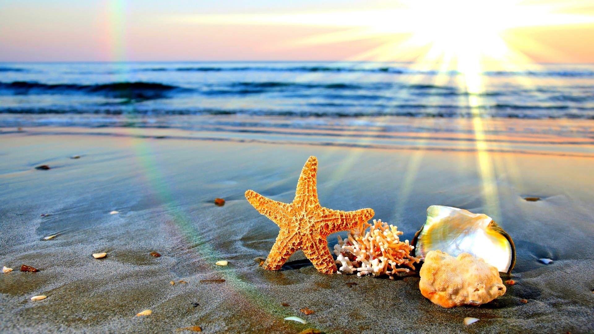 Sezonul estival se apropie: Ce reguli trebuie să respecte, mai nou, turiștii