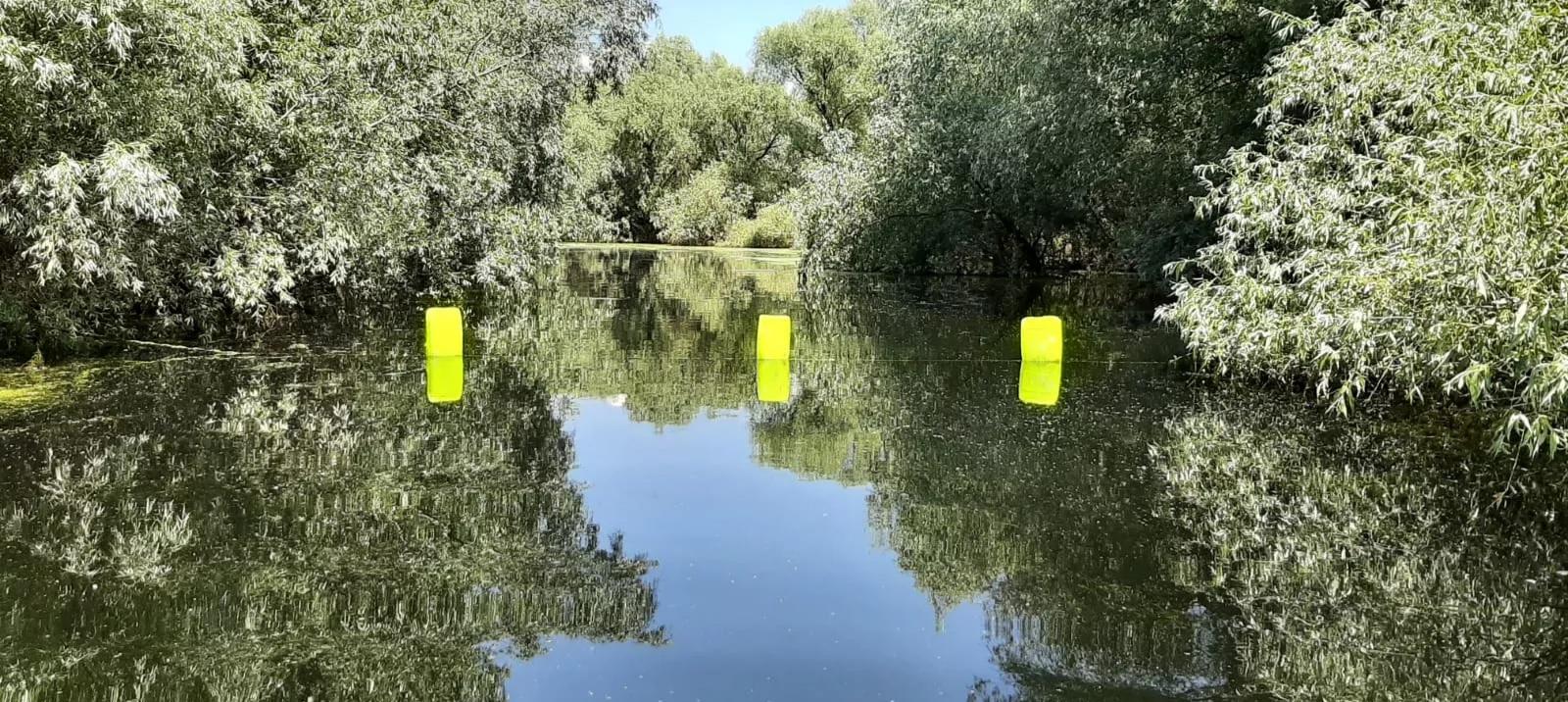 Zonele sensibile din Rezervația Biosferei Delta Dunării trebuie protejate