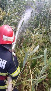 2000 de metri pătrați de vegetație uscată au ars în Zagăn