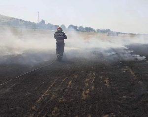Cinci incendii într-o singură zi în județul Tulcea