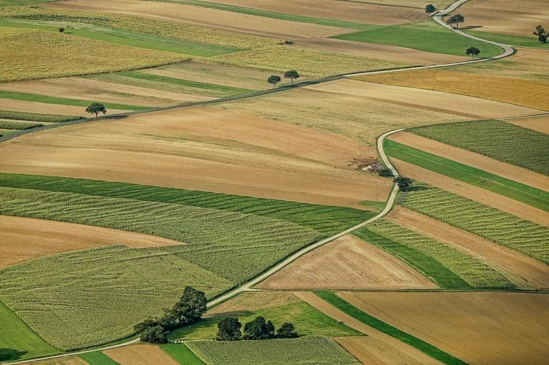 Sute de hectare de teren agricol din Tulcea cumpărate de frații Pavăl