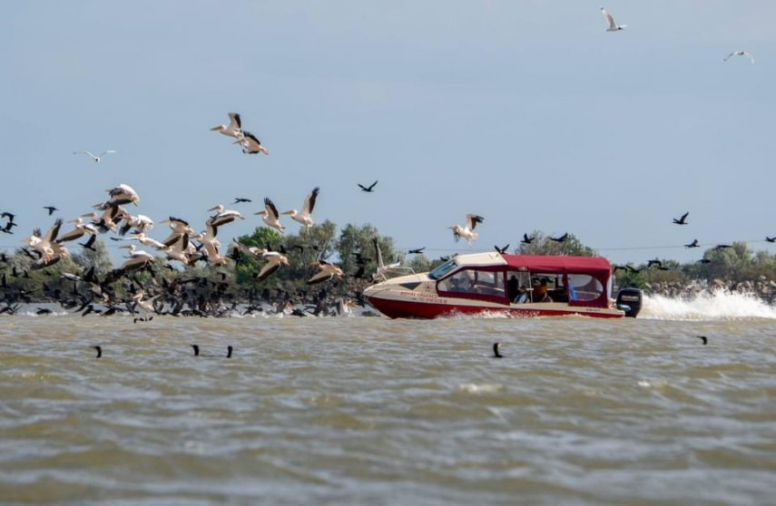 Noi reguli pentru plimbarea turiștilor în deltă!