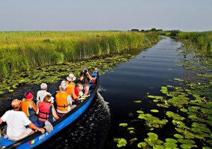 Trasee turistice din deltă, blocate de plauri și bușteni!