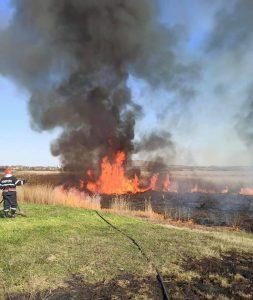 Alertă în România: risc ridicat de incendii de vegetație și păduri