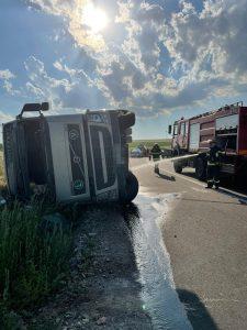 100 de oi moarte într-un accident la Ceamurlia de Sus