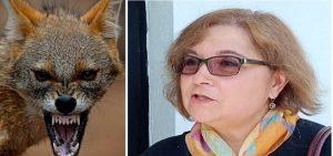 Atena Groza: Șacalii nu sunt o problemă în Deltă