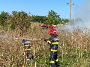 Șase incendii de vegetaţie, într-o singură zi, în județ
