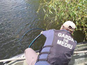 Patru braconieri piscicoli depistați de Garda de Mediu în Delta Dunării