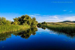 1 septembrie – Ziua Rezervației Biosferei Delta Dunării
