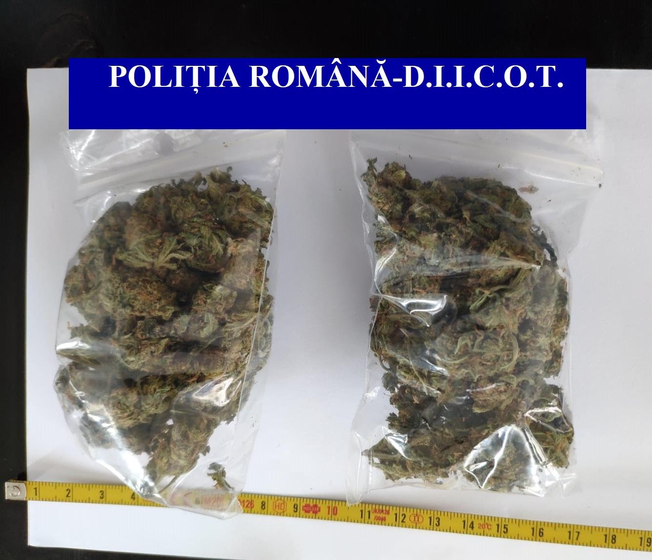Patru percheziții în Sulina, la traficanți de droguri