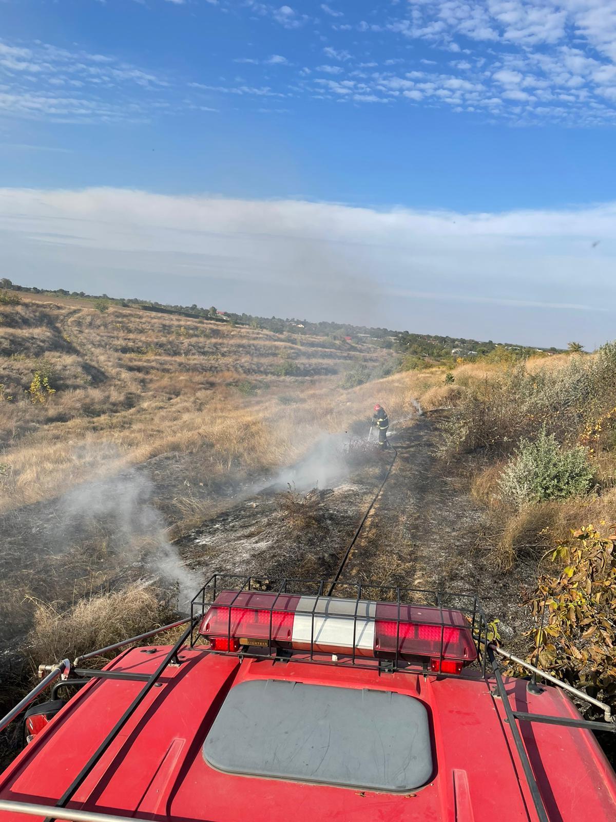 Pompierii au avut iar de lucru cu vegetația uscată