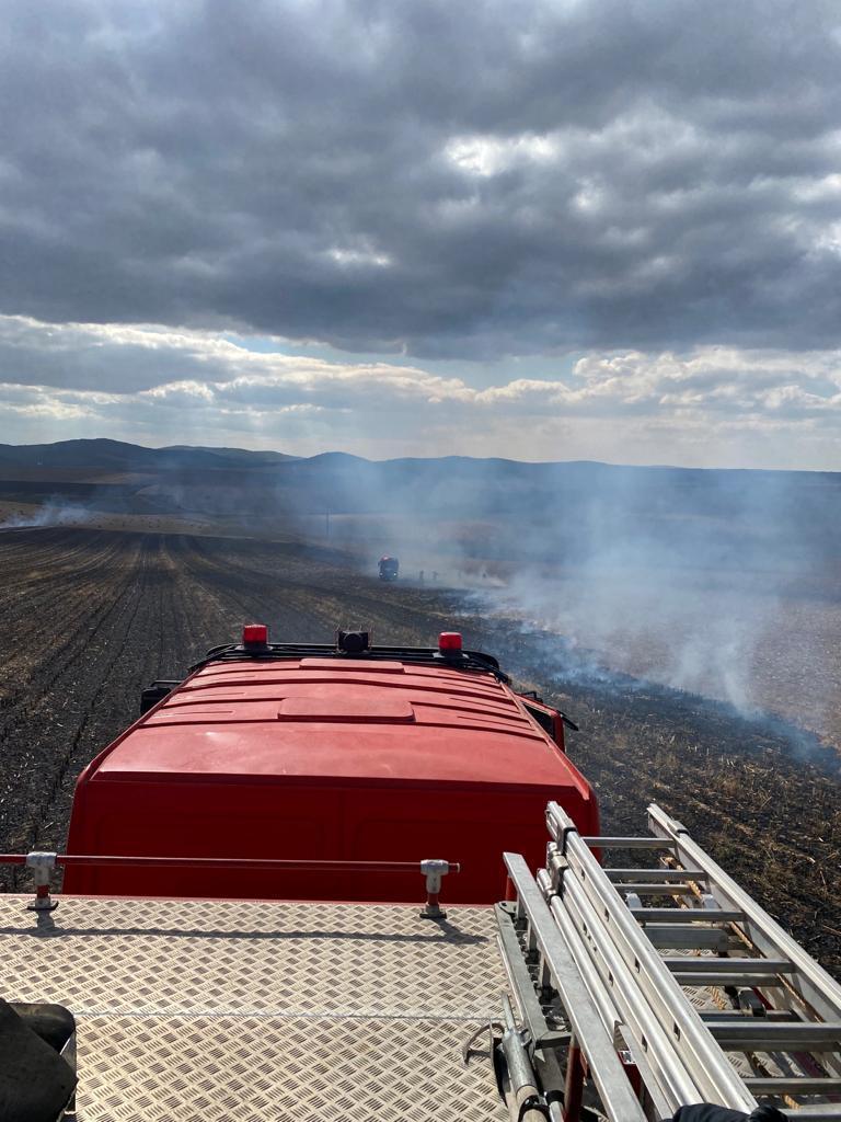 20 hectare de miriște de porumb au ars la Somova, din cauza unui foc nesupravegheat