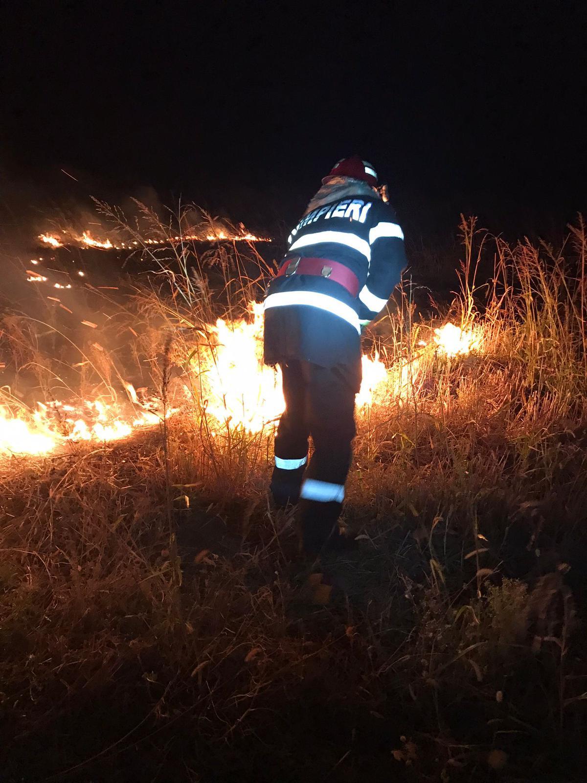 Focuri scăpate de sub control, aseară, în municipiu și la Turcoaia! Au ars hectare întregi de vegetație uscată