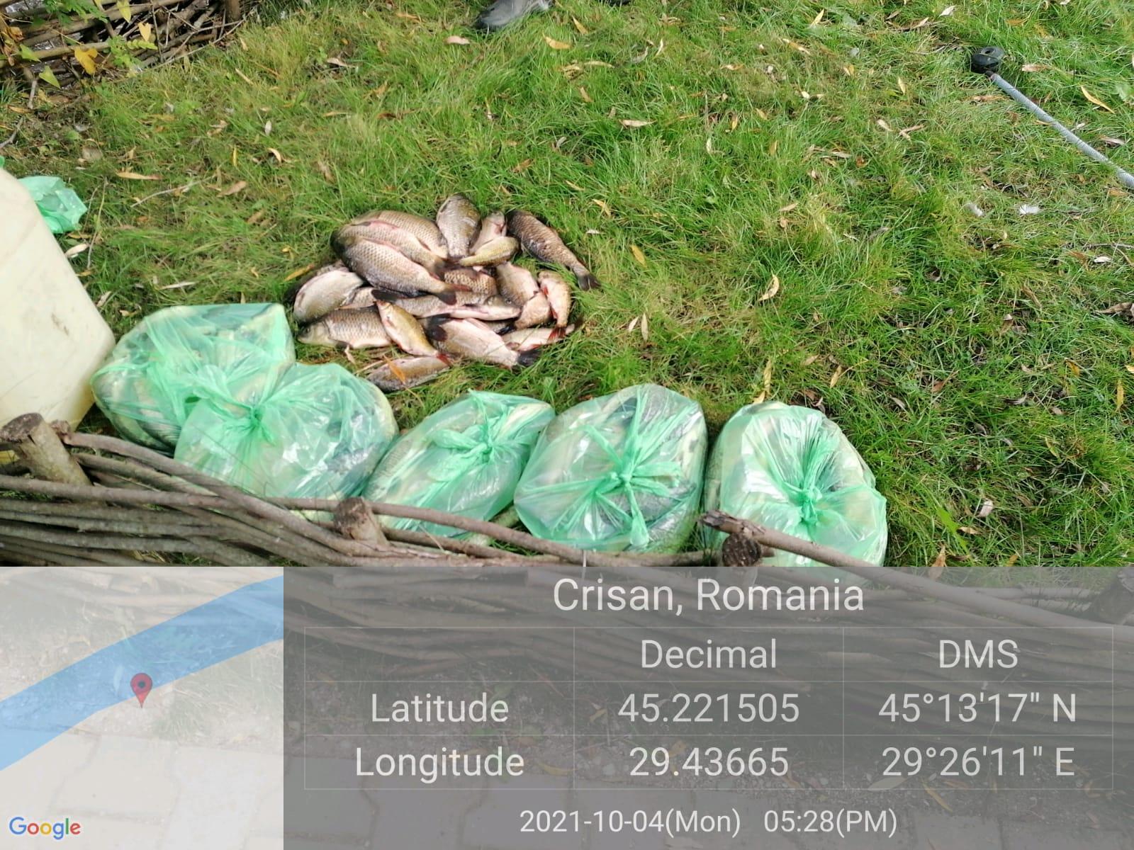 Amenzi de peste 120.000 de lei pentru pescari și societăți comerciale din Delta Dunării, pentru comercializare ilegală de pește