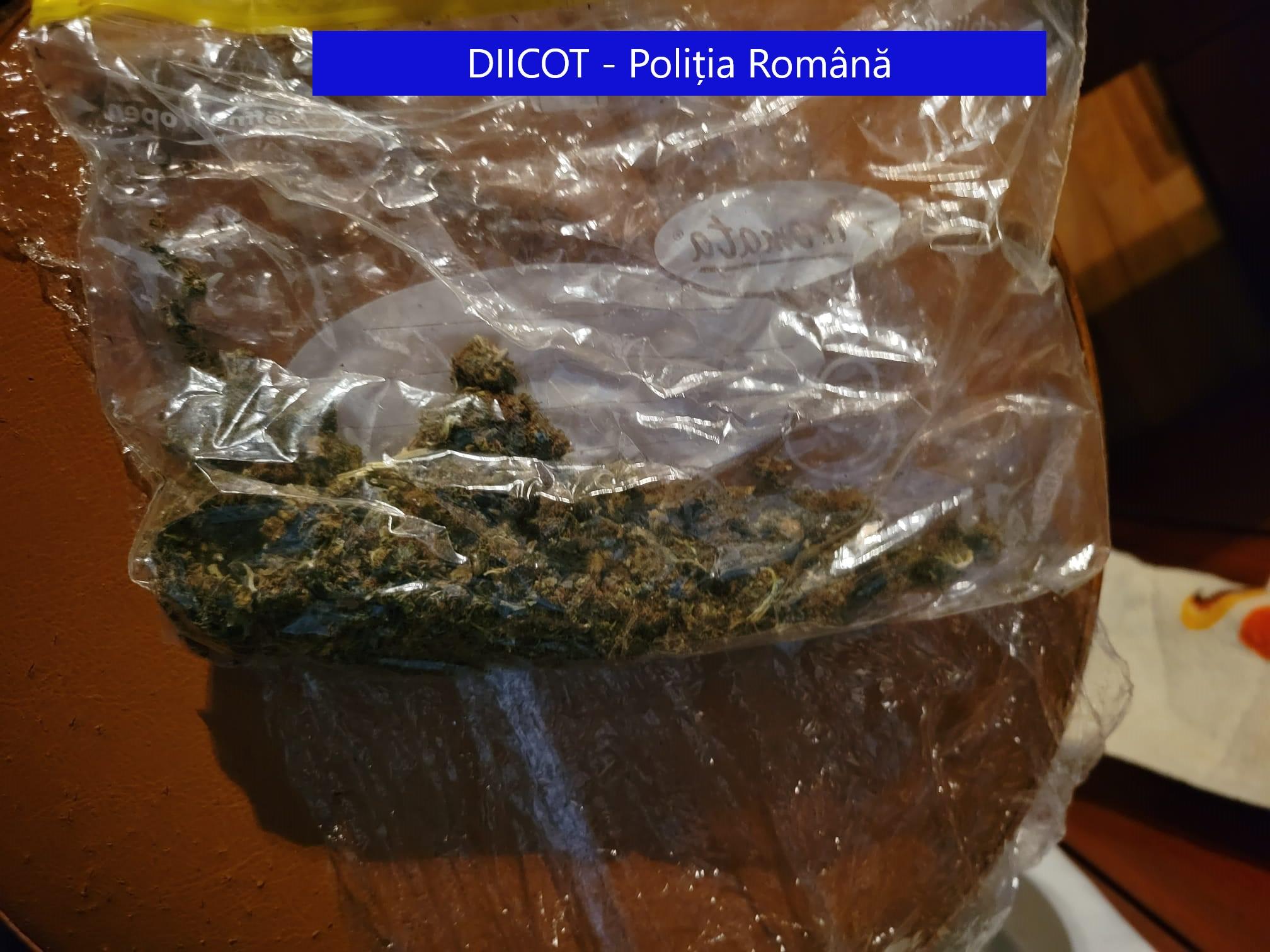5 indivizi arestați de Tribunalul Tulcea, după ce au comercializat cannabis pe raza județului Tulcea